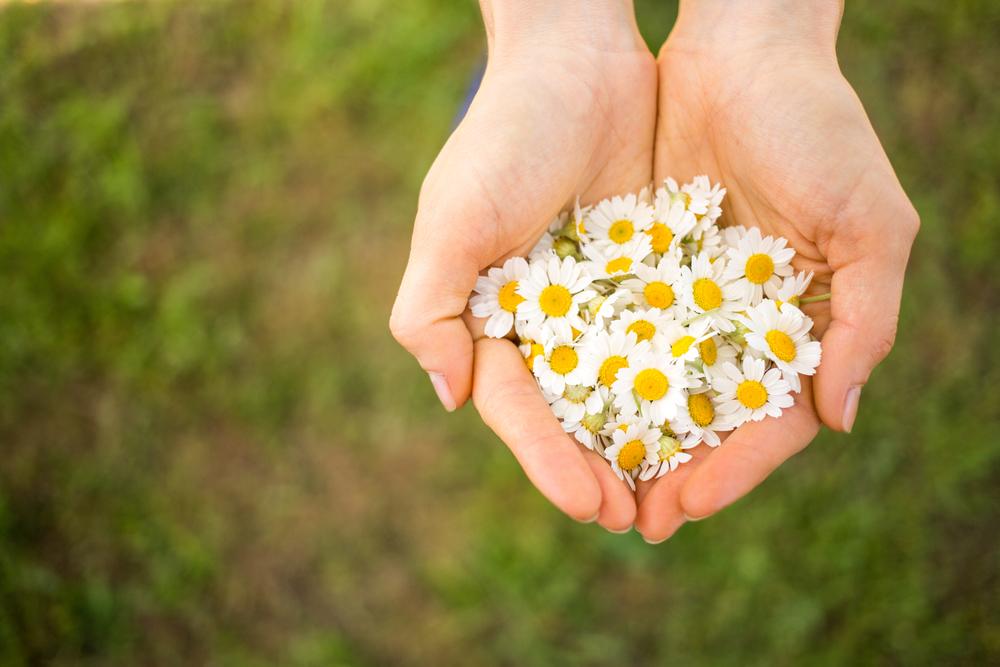 Generosity: The Gateway to Freedom