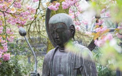 Guided Meditation Satipatthana