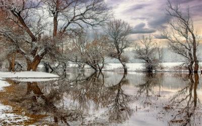Equanimity: Establishing and Maintaining a Balanced Mind